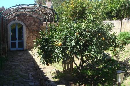 Dimora Tipica nel Parco Narurale Sette Fratelli - Quartu Sant'Elena - Chatka