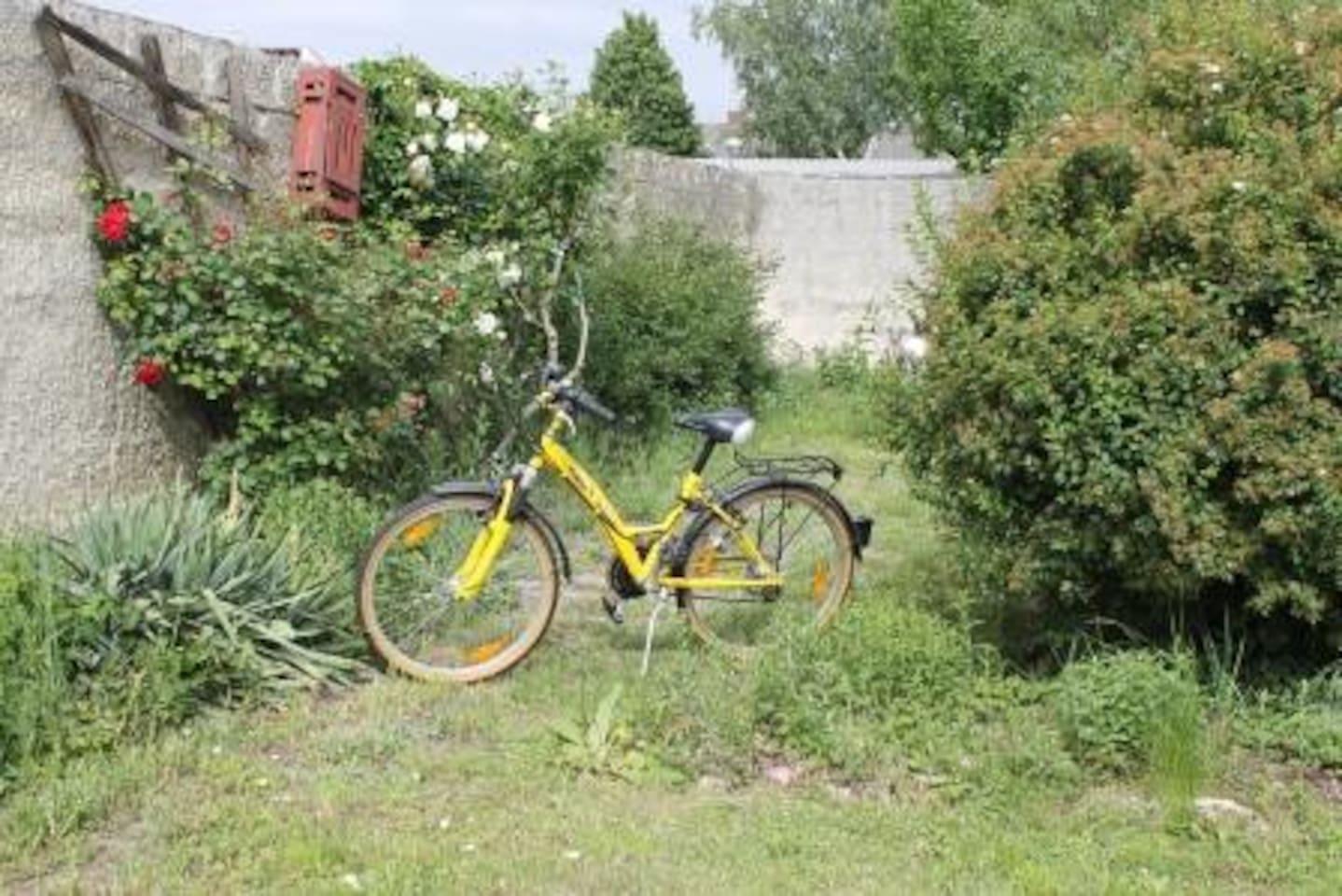 Auf gehts zum Radeln im Nationalparkgebiet