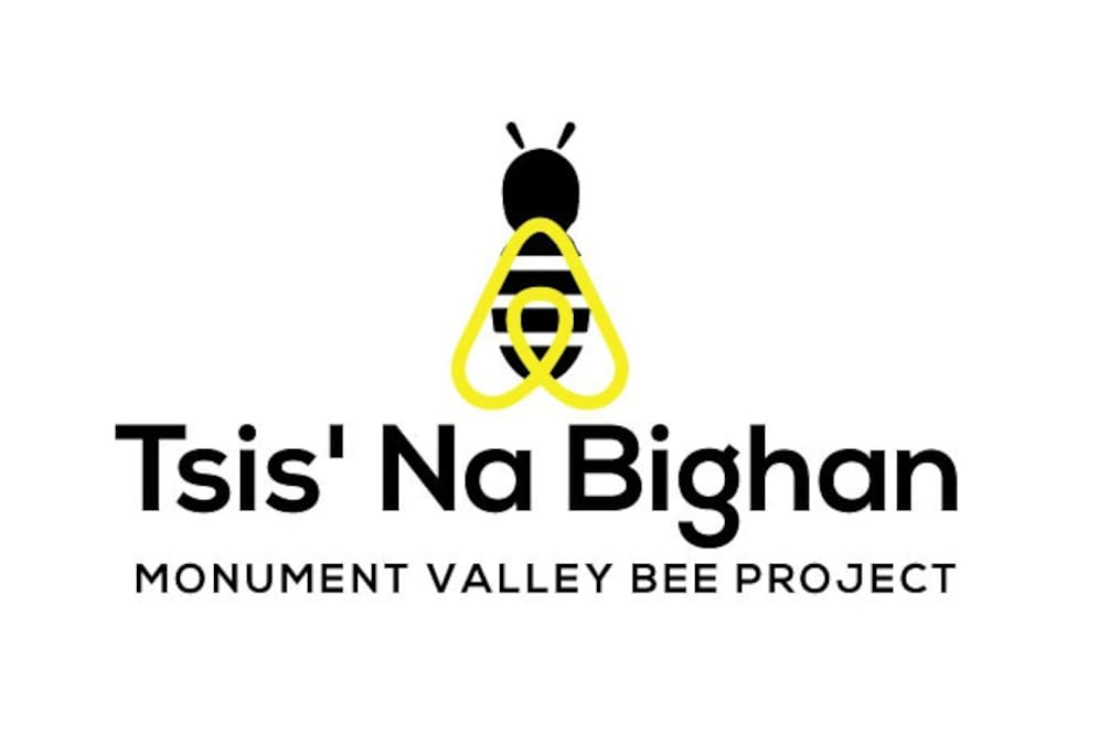 Air Bee & Bee - that benefits the local community through bee hives for traditional farmers.