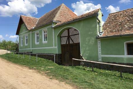 Casa Nitzu