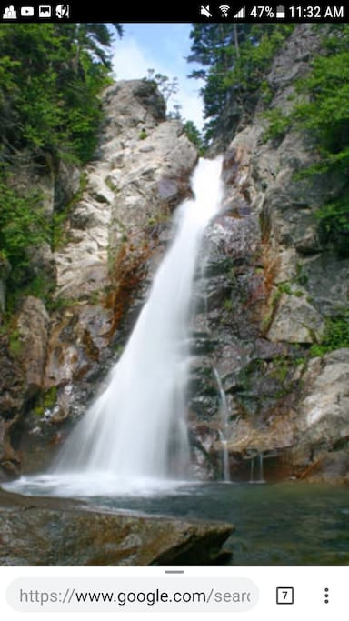 This is Glen Ellis Falls, our favorite place to visit. It's 65 feet high and only 25 minutes away!