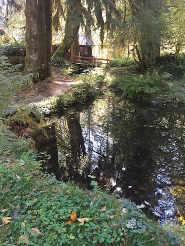 The duck pond below the cottage.