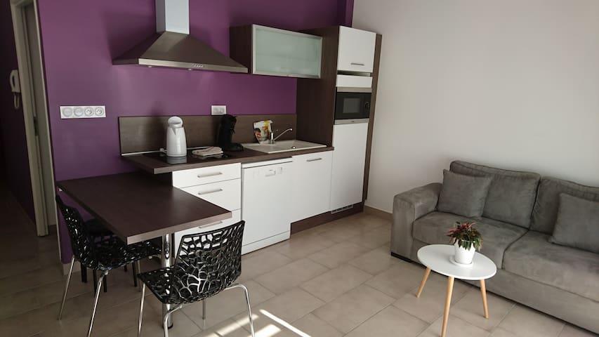 Bel appartement meublé, terrasse et parking (102)