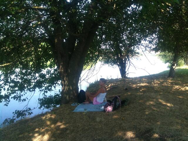 picnics by the lake
