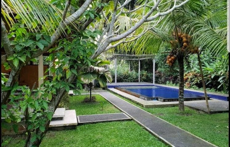Coco Alami Guest House Ubud Deluxe 105