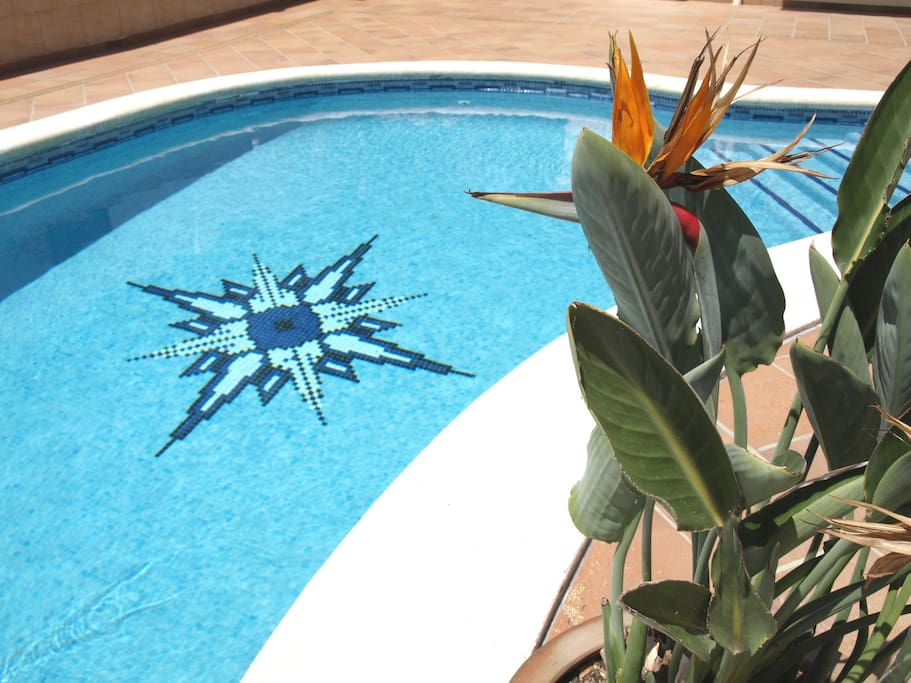 At the forefront the pool and its characterictic wind rose.