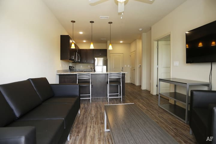 Brand NEW 1 BR near Downtown & Campus