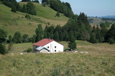 maison indépendante dans le parc du Haut-Jura - La Pesse