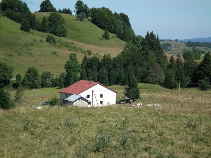 maison indépendante dans le parc du Haut-Jura