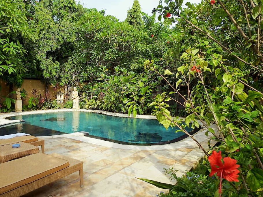 Property Overview - Pool