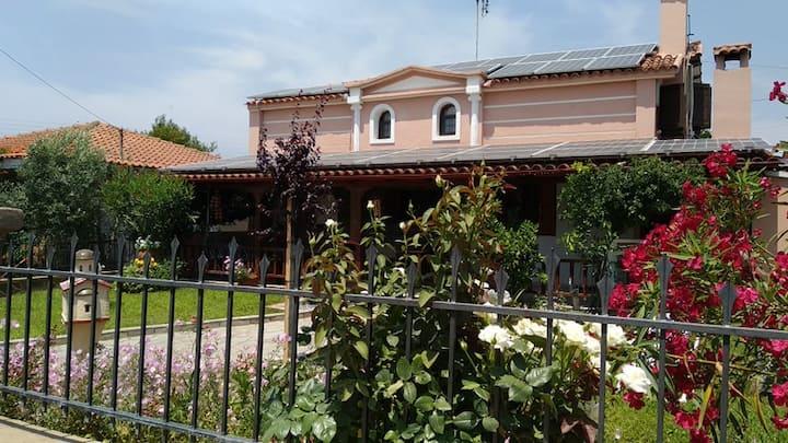 Korina' s House