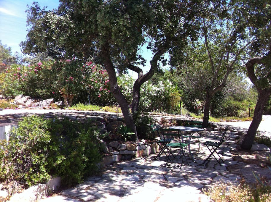 Middle terrace shaded by the Portugese oaks