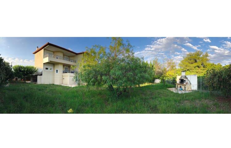 Ομορφη κατοικία στο πευκοδάσος του Σχοινιά