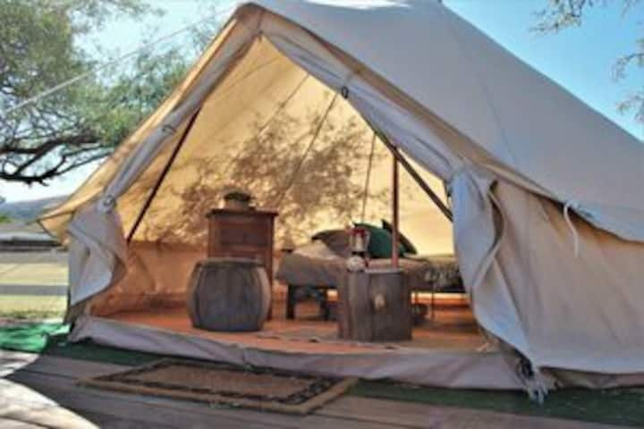 Luxury Camping near Natural Springs & Hiking