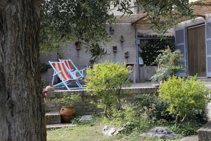 Casa dei Carli - Ostra - Talo
