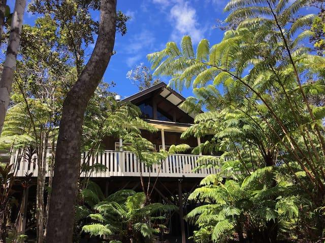 ~Ao Lele~ Flying Cloud of Kīlauea