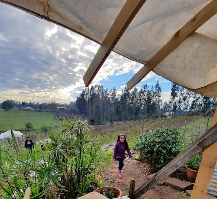 Habitaciones en sector campestre de Temuco