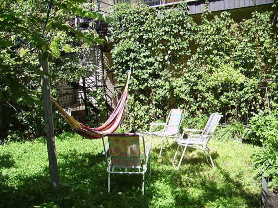 backyard with hammock and lawn chairs (I have four)