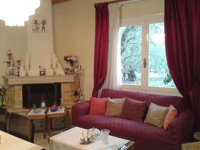 HolidayHouse inside olive grove on Volos outskirts - Volos - House