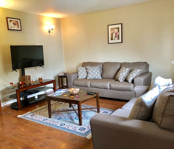 Three bedroom fully furnished apt