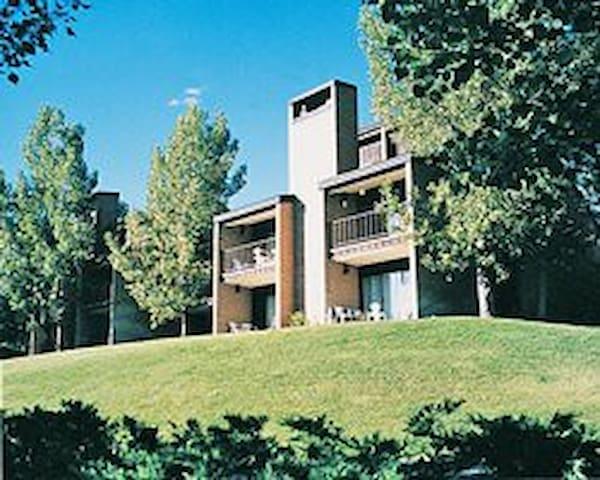 Bigwood Condo Sun Valley Idaho