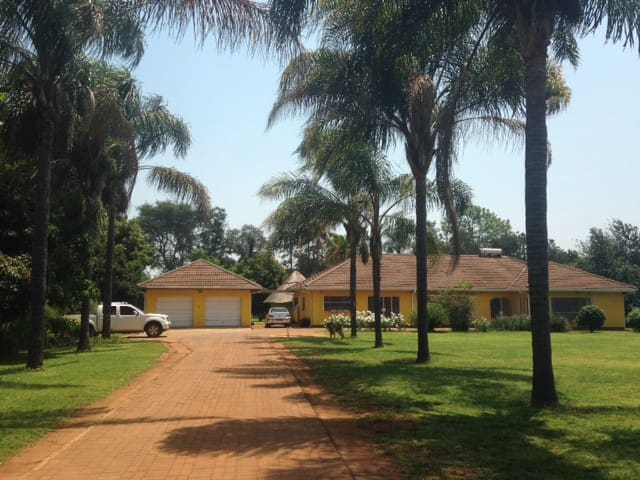 Oasis in Harare  - Harare - House