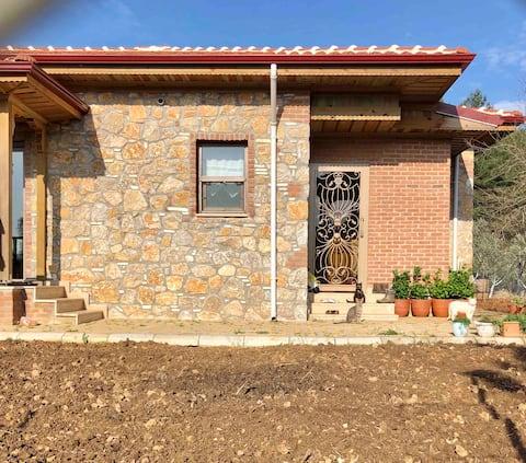 Edi's Stone House