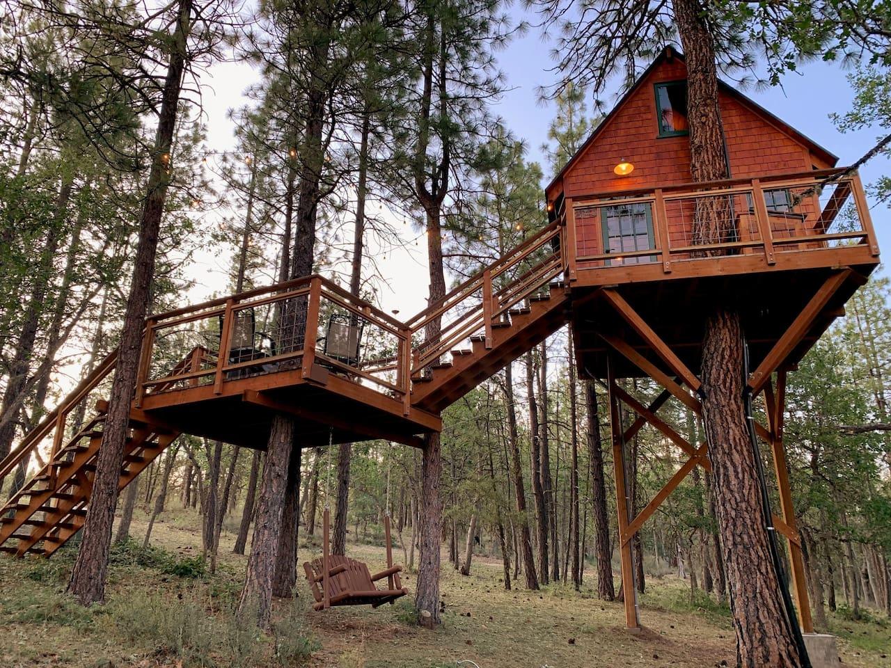 Amazing Treehouse escape!