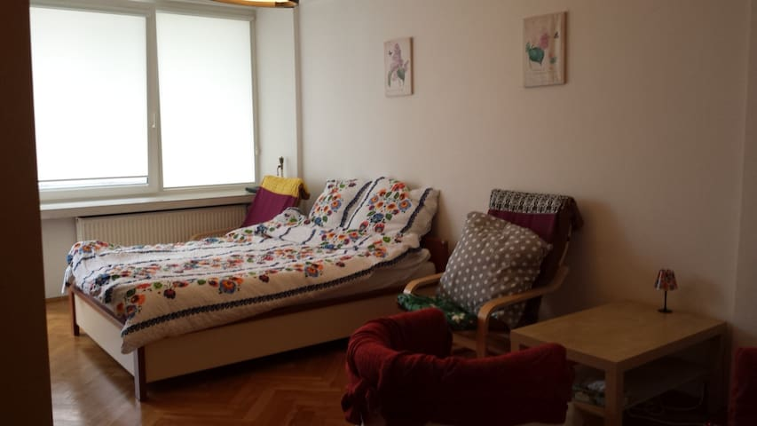 Cozy apartment in central part of Warsaw! - Warszawa - Huoneisto