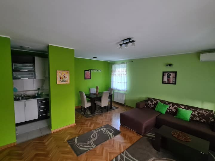 Apartment Terzic