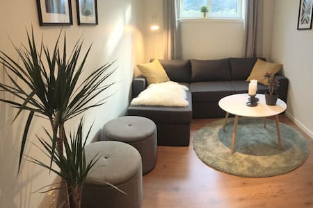 Modern and newly renovated apartment in Voss