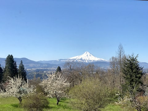 #2 Mt. Hood View room & private bath White Salmon