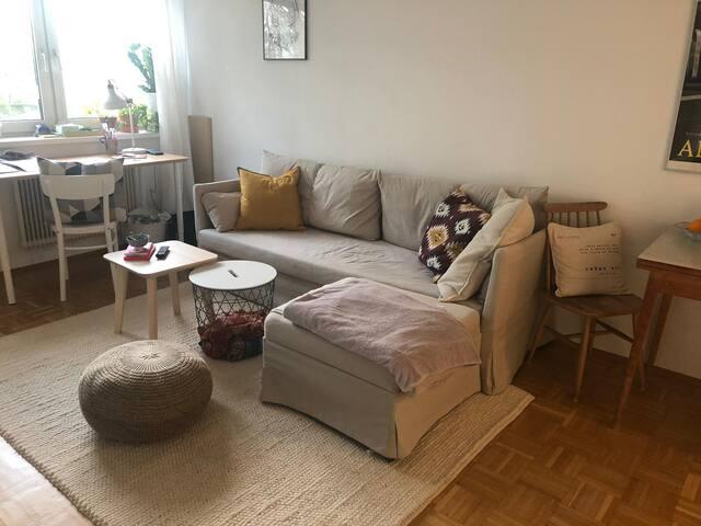 Gemütliche kleine Wohnung nahe Wagner-Jauregg-KH