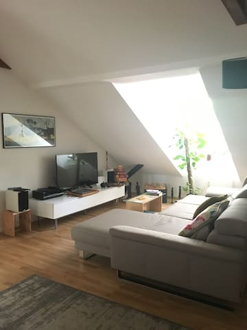 Nice flat 5 minutes from Frankfurt fair!