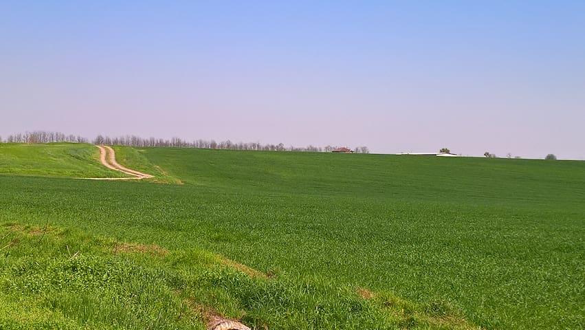 Nella verde campagna lodigiana - Graffignana - Ev