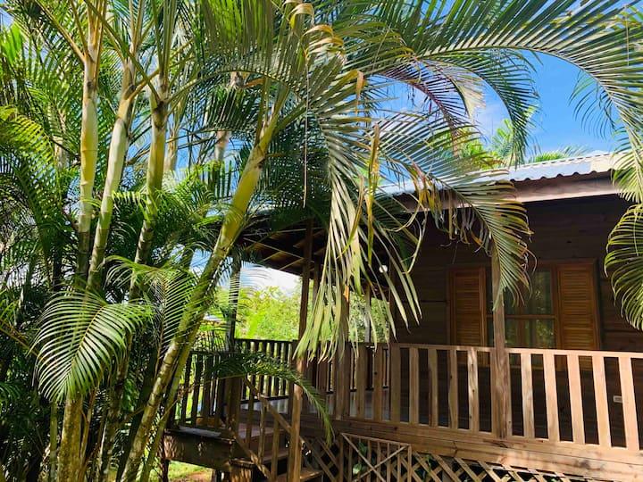 Wood Cabin w/ Private Pool, Near Nauyaca #6