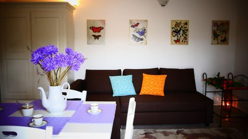 la zona living il divano IKEA  è matrimoniale il tavolo per la colazione