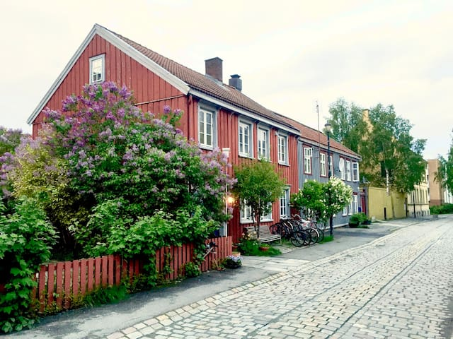 Welcome - Trondheim - Apartment