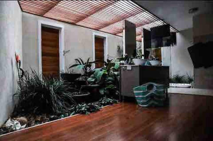 Rain forest bathroom