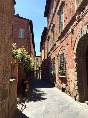 Two beds in centre of Lucca at Via Guinigi - Lucca - Apartment
