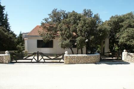 Holiday home Tatjana - Mandre - Rumah