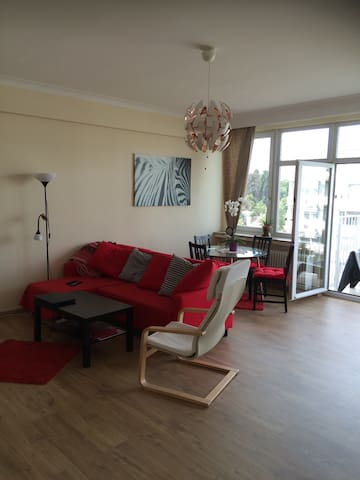 Large sunny room in spacious appart - Ixelles - Wohnung
