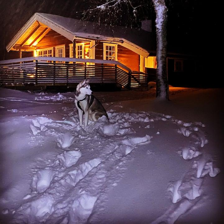 Velutstyrt hytte i flott natur, Dale/ Fjaler