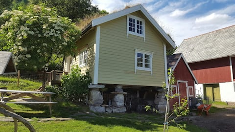 Tiny house with fjordview!