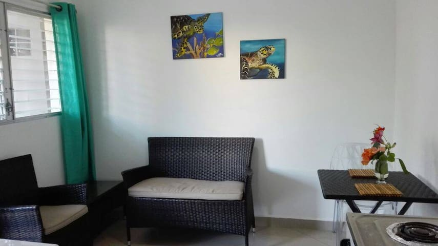 Centric aparthotel with a nice ocean view - Coxen Hole - Apartment