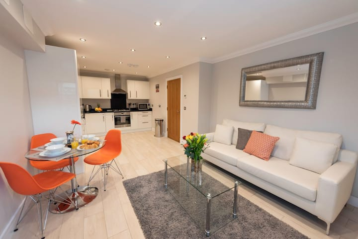 Luxury One Bedroom Apartment in Central Reading