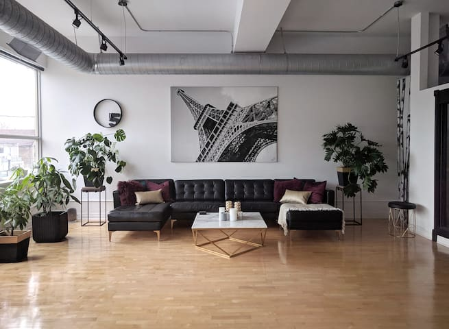 Beautiful, modern, 1000 sq ft loft full of light.