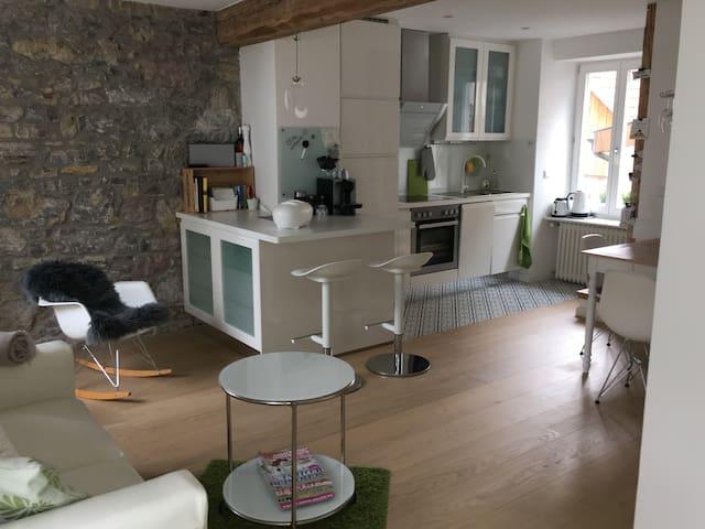 Stil- und liebevoll eingerichtetes Haus in Lörrach - Lörrach - Dům