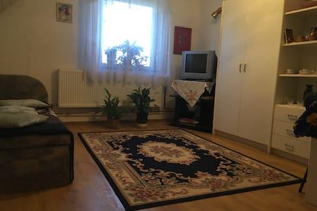 Lady Margit's Room