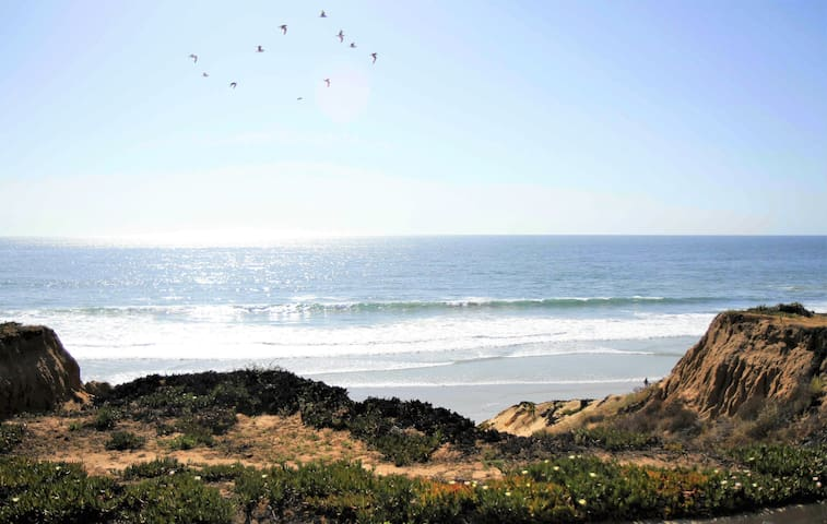 Spectacular Ocean Front Rental .. Lowest rates !!!